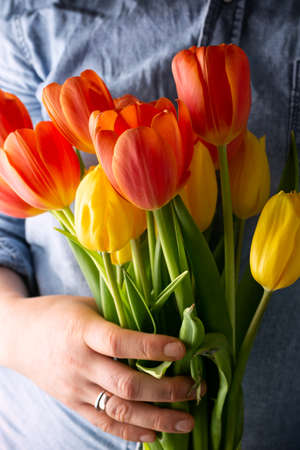 woman holds a bunch of red and yellow tulip flowers in hands