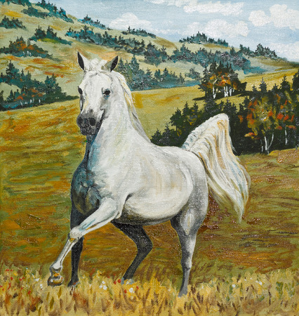 old horse: oil painting - white horse galloping in field, old, portrait, illustration