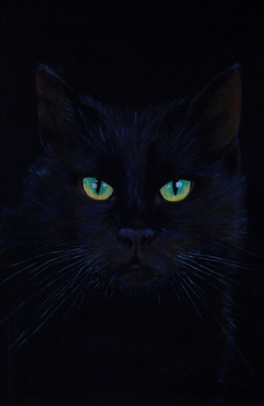 cats eyes: drawing of a black cat, oil painting, cats eyes