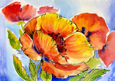 poppies: watercolor painting of a bouquet of poppies