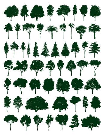 Bomen set