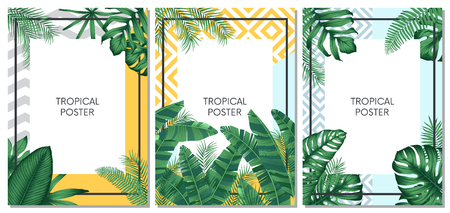 Summer tropical vector set design for cards, poster or flyer with exotic palm leaves Illustration