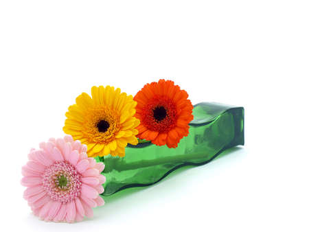 Gerber flowers Stock Photo