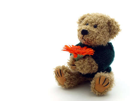 Teddy Bear with flower on the white background photo