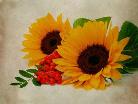 Sunflowers textured