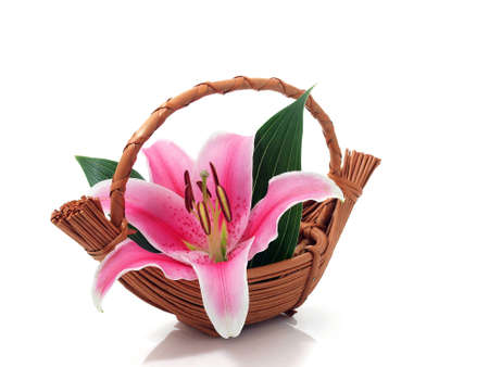 Lily flower in the basket