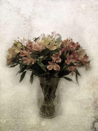Alstroemeria lily flowers textured