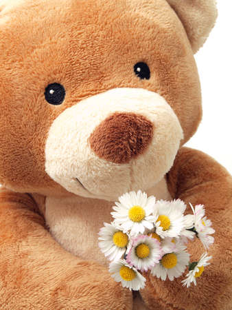 plush toy: Teddy Bear with flowers Stock Photo