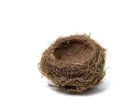 白い背景の上の卵の鳥の巣