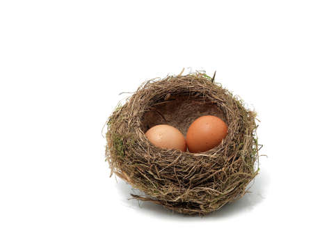 Birds nest with eggs on the white background photo