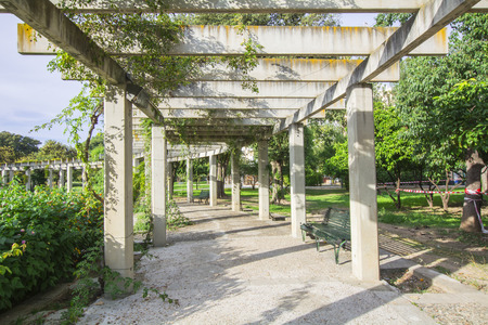 creepers: Large pergola with hanging creepers in a park Stock Photo