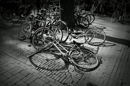 black: Abandoned bicycles black and white