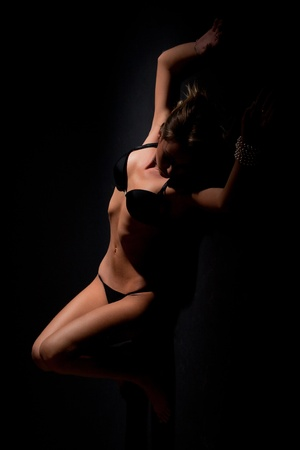 Sexy female silhouette, studio isolated vertical shot photo