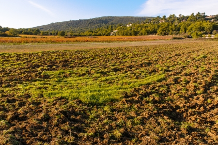 A plowed field in Provence, in GAréoult near Brignoles in France, at sunset
