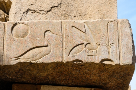 Egyptian hieroglyph in the Karnak temple in Luxor photo