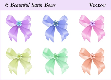 Six beautiful colored satin bows with a little flower Vector