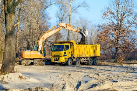 An orange excavator and a yellow truck working in the park under a cold morning sunlight in winter photo