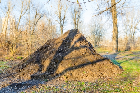 A huge heap of soil in the park with morning sunlight photo