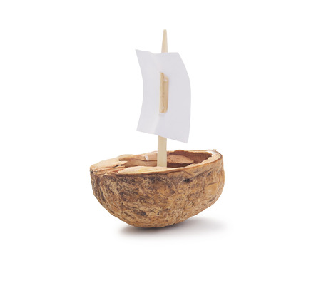 A walnut shell with a sail, isolated on white