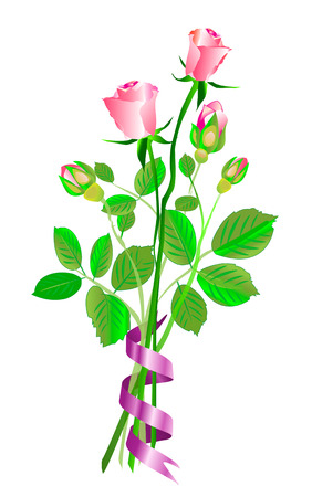 nosegay: A nosegay of pink roses with buds and open roses, on white background