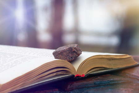 blink: Stone on an open book put on red wet tiles. The sun rays blink through the trees branches