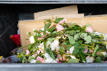 trashed: Some pink roses in a garbage box