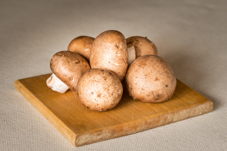 campestris: Fresh brown champignons mushrooms, Agaricus bisporus, on a wooden cutboard