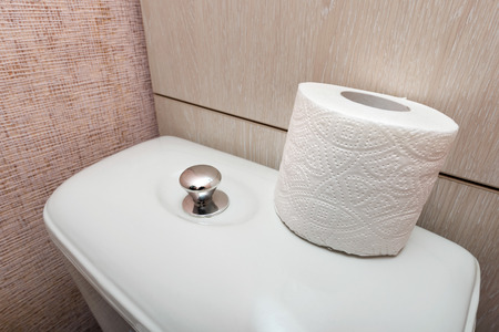 hygienic: A soft white hygienic toilet paper roll is put on the flush, in the restroom