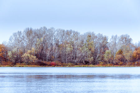 Cold view of trees close to  the Dnieper river in autumn Stock Photo