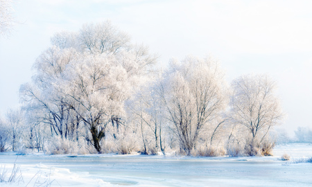 craquelure: Landscape with trees, frozen water, ice and snow on the Dnieper river in Kiev, Ukraine, during winter