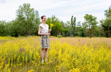 ladys: An adult woman stands up in a meadow covered with Galium verum flowers, also known as ladys bedstraw or yellow bedstraw, with a bunch of yellow flowers in her hands, in Kiev, Ukraine