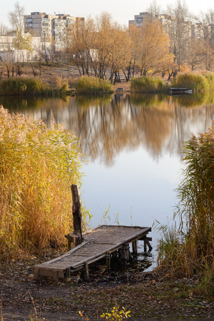 Pontoon and Phragmites australis close to the lake in autumn, in Kiev, Ukraine Stock Photo