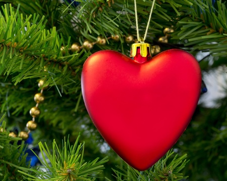 The Christmas-tree decoration in the form of red heart hangs on a green fur-tree branch. Stock Photo - 12453413