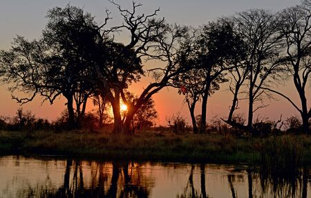 Evening mood over the Kwando River in Namibia