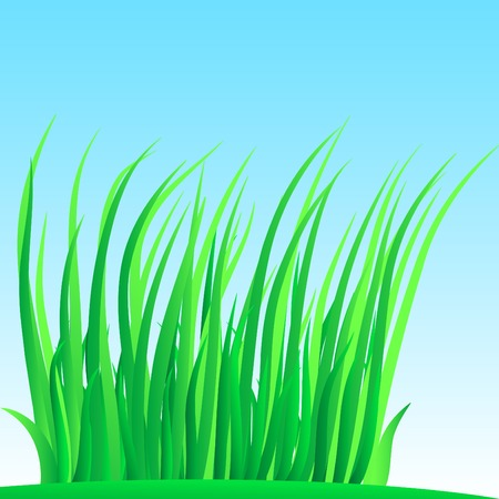Wisp of grass. Vector illustration. Stock Vector - 2835509