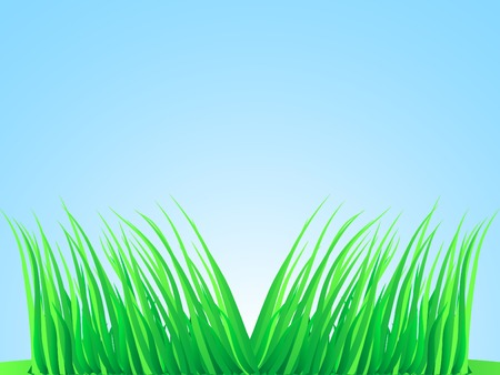 Wisps of grass. Vector illustration.  Stock Vector - 2835507