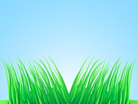 Wisps of grass. Vector illustration.  Stock Vector - 2835507