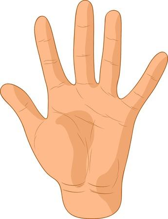 five elements: Number five sign. Vector illustration.