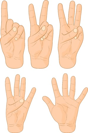 Numbers hand signs. Vector illustration.  Vector
