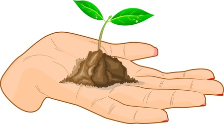 Young sprout in a hand. Vector illustration. Stock Vector - 3531579