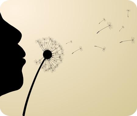 black seeds: Gigl and dandelion. Vector illustration.