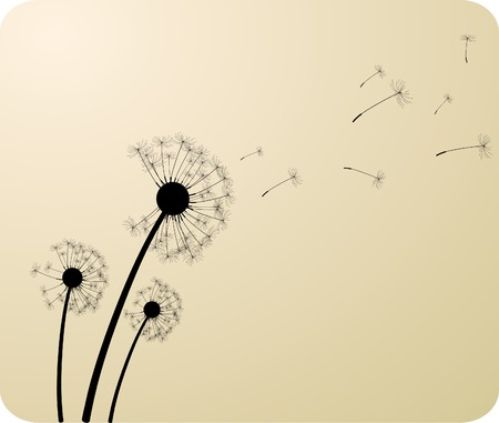 Three dandelion silhouettes. Vector illustration. Stock Vector - 4480194