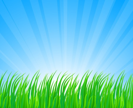 Fresh green grass. Vector illustration.  Stock Vector - 4610571