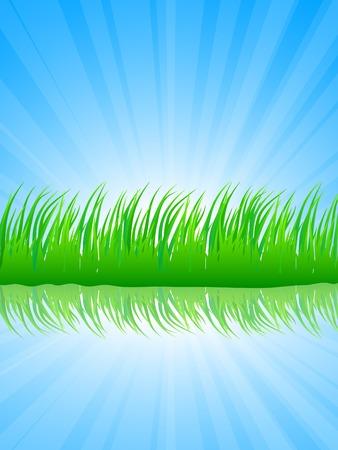 Fresh green grass. Vector illustration.  Stock Vector - 4610584