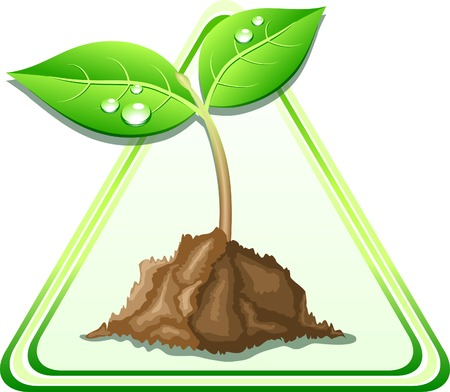 Young sprout in ground. Vector illustration.