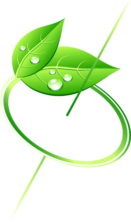 reflection of life: rotation green leaves. Vector illustration.