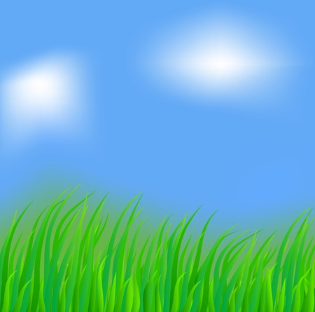 Fresh green grass. Vector illustration.  Stock Vector - 4715838