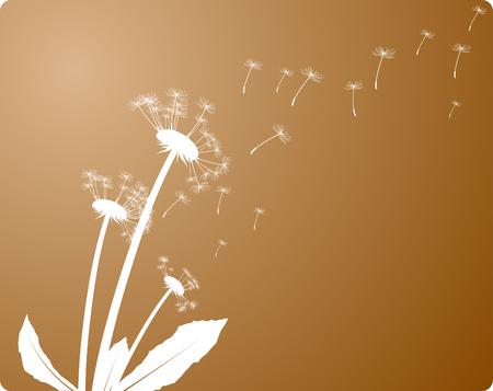 dandelion wind: Wind and dandelion. Vector illustration.