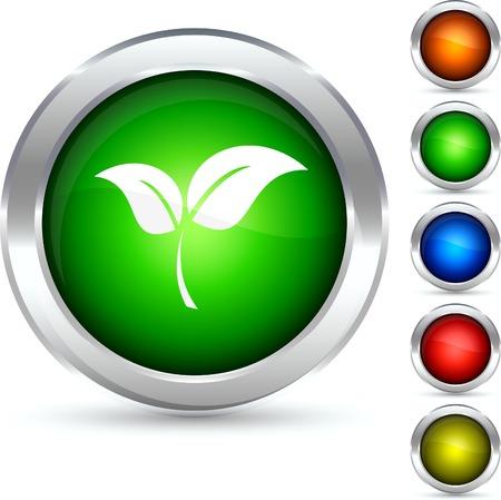 Eco detailed button. Vector illustration.  Stock Vector - 5304226