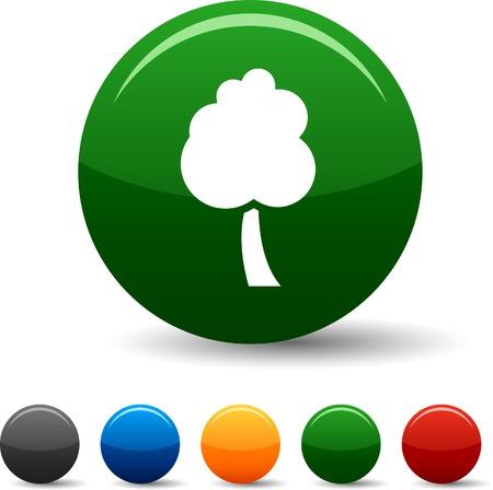 tree icon set. Vector illustration. Stock Vector - 5804371